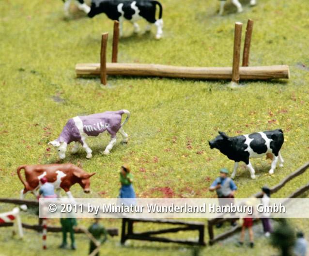 Panini 2011 Bild Nr 100  Miniatur Wunderland